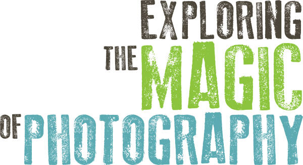 Exploring The Magic of Photography