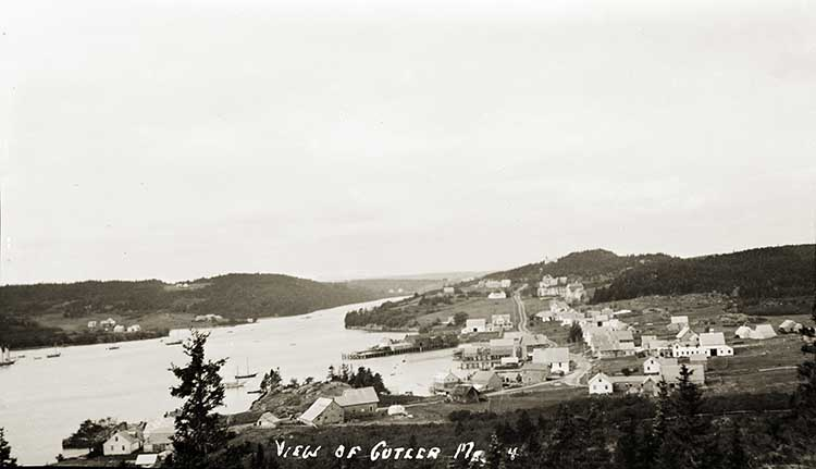 View of Cutler, Me. 4.
