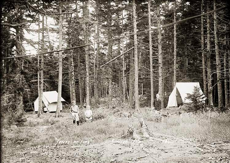 Tents at Firs, Sunset, Me