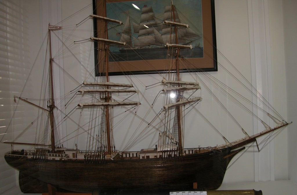 Model of the bark HARVARD