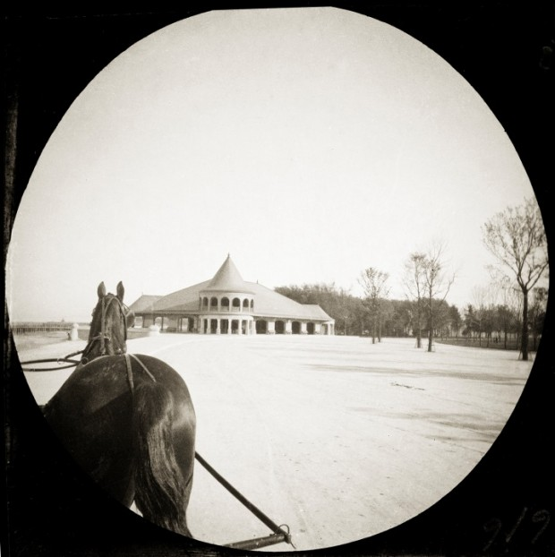 (R2014) Horse in Winter, Round Image, Anonymous